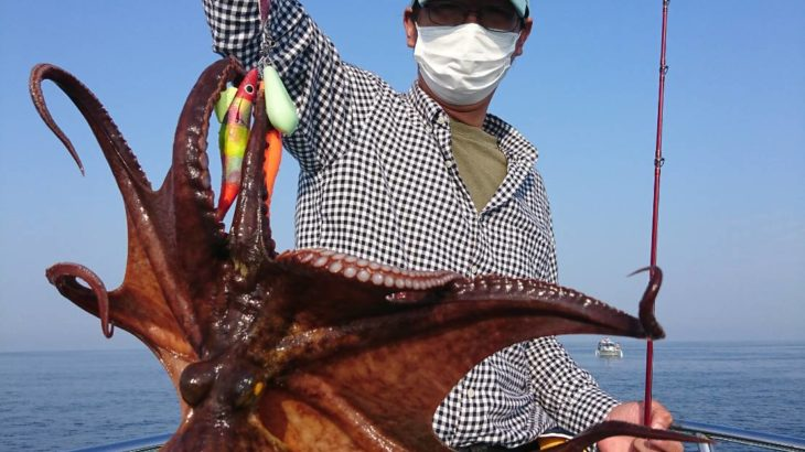 三重県 5月29日 タコ