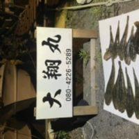三重県|津大翔丸 マゴチ爆釣り