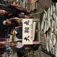 三重県 爆釣り大翔丸 青物サワラ釣りまくりー