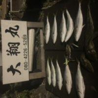 三重県|津大翔丸 サワラ爆釣りモード入りました