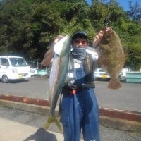 三重県 イワシの泳がせ釣り。ヒラメ釣り